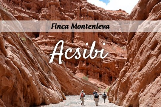 15% off in excursion to Acsibi